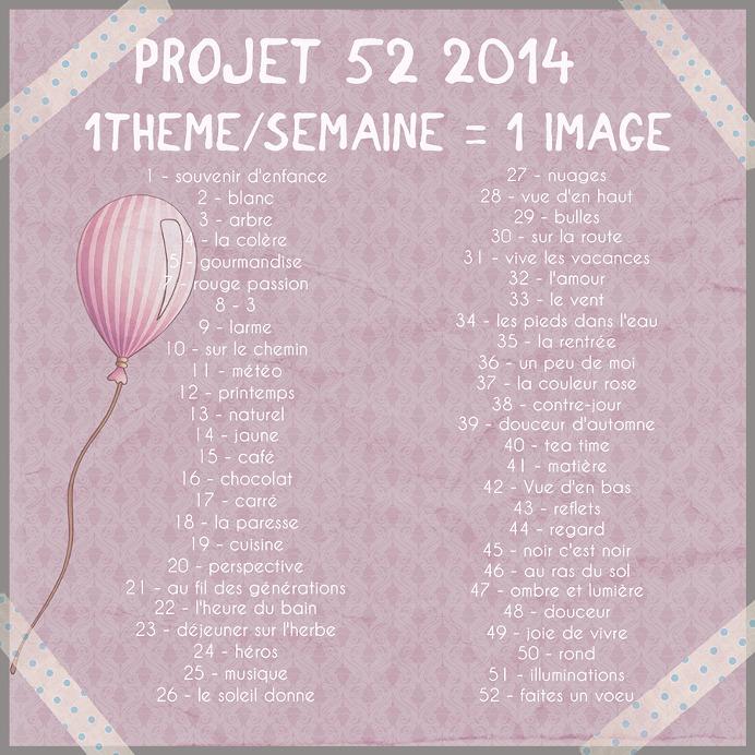Programme Projet 52 2014